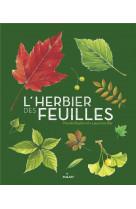 L-herbier des feuilles
